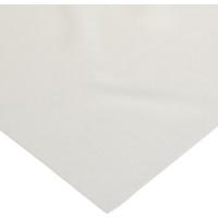 Amersham 10600102 Hybond LFP 0.2um PVDF Membrane 80 x 90mm, Pack of 25